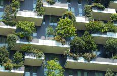 Investissements immobiliers : un risque particulier pour les ESMS